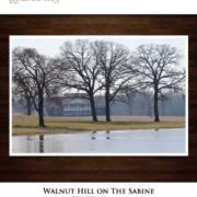 ranch marketing brochure