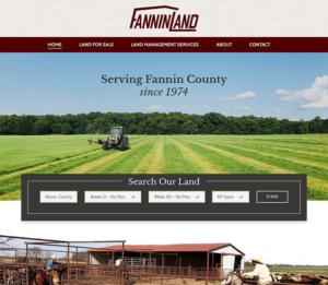 Website Design - Fannin
