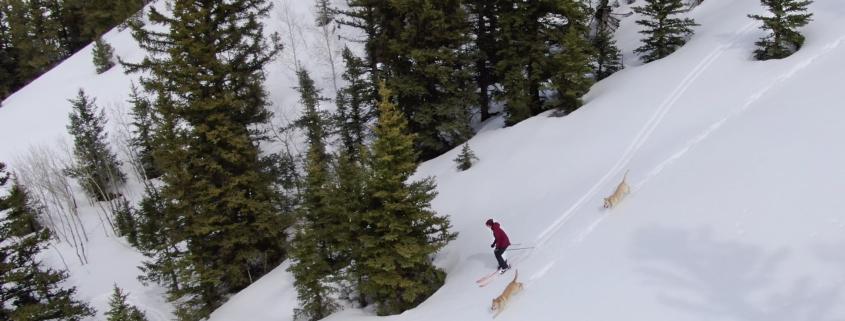 Wilder-Winter-Lifestyle-Video